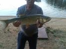 Bolen, 75cm , ÚN Orlík, ryba vrácena_1