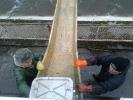 V naší rybářské organizaci - ČRS MO Rožmitál pod Třemšínem, jsou aktivní i senioři